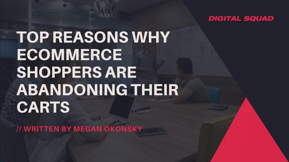 Ecommerce shoppers